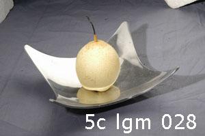 5c lgm 028